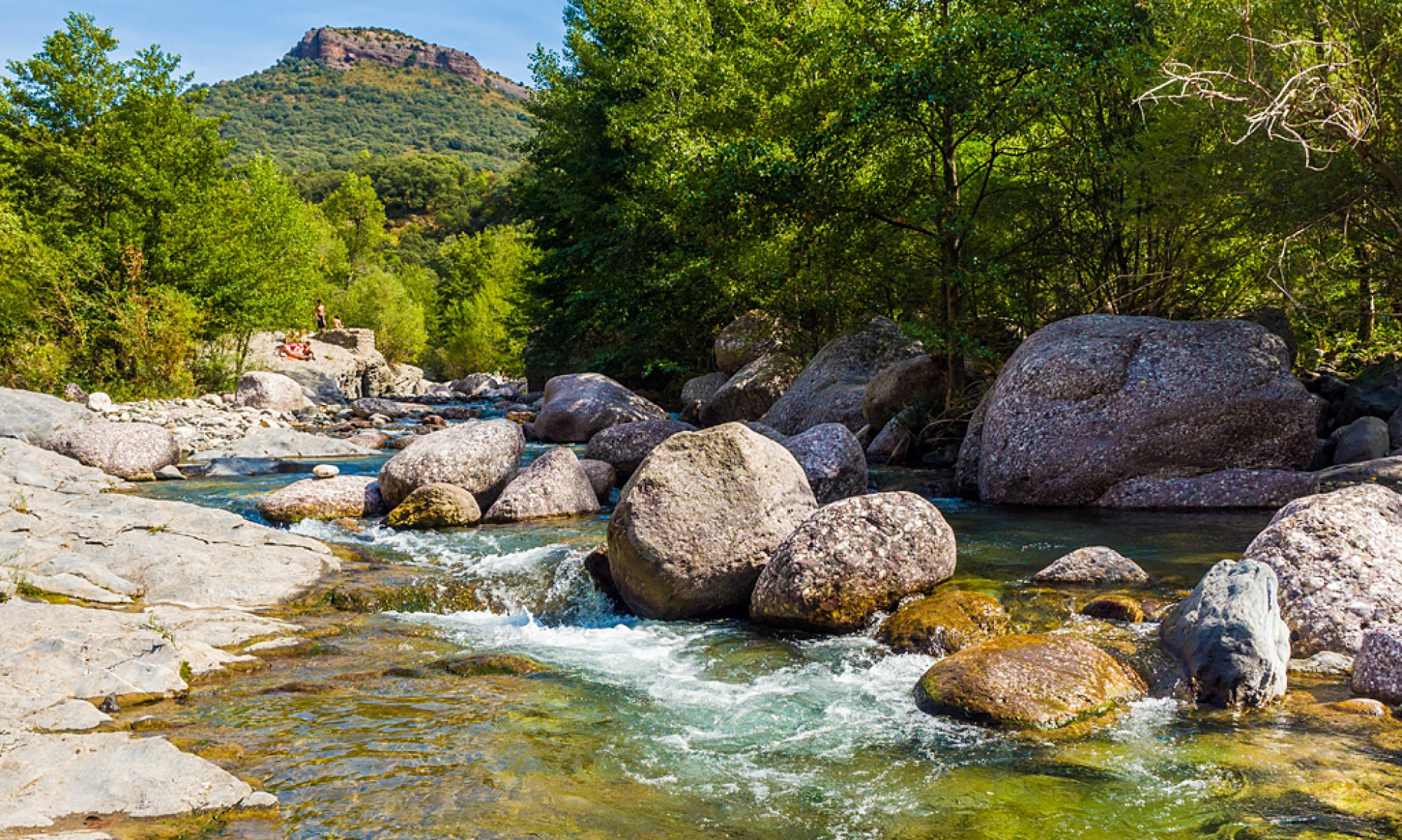 Riu Flamisell a l'estiu al seu pas pel Congost d'Erinyà